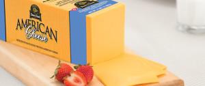 ¿Puede usted congelar el queso americano?